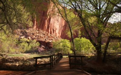 Capitol Reef Bridge