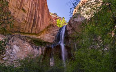 Utah Calf Falls