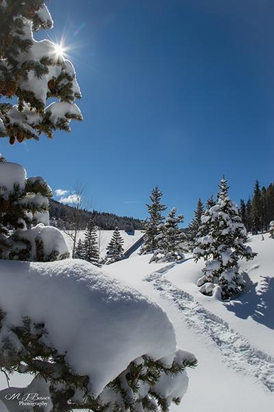 Snowshoeing through the Snow