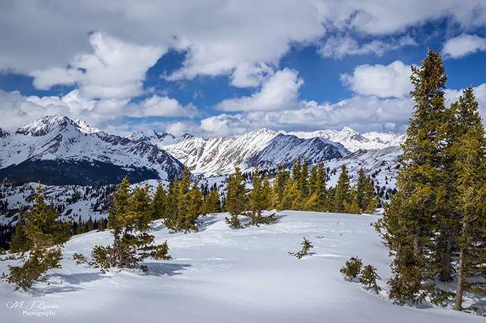 View from Cottonwood Pass